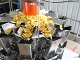 Megha Chips Process